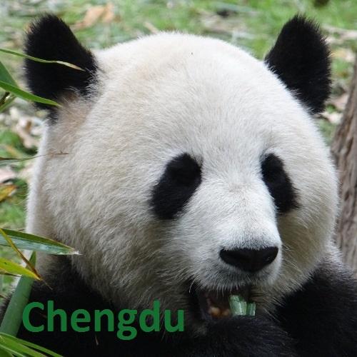 Chengdu album