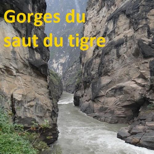 Tigre album